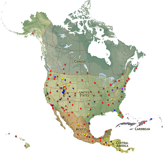 North America Map Region   ChurchofJesusChristTemples.org